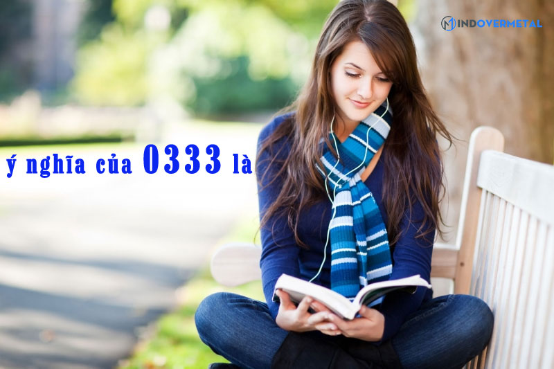 y-nghia-cua-0333-la-mindovermetal