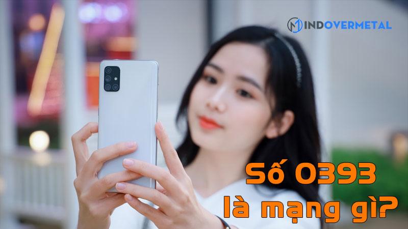 0393-la-mang-gi-y-nghia-phong-thuy-cua-0393-mindovermetal