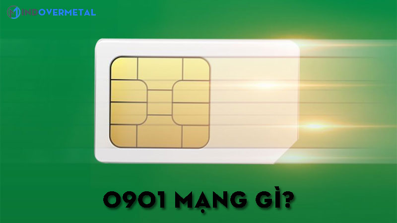0901-mang-gi-bat-mi-y-nghia-sim-dau-so-0901-6