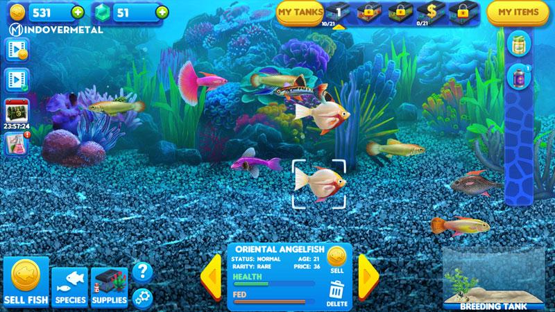 game-tycoon-fish-tycoon-mindovermetal-1