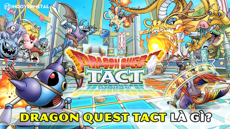 dragon-quest-tact-la-gi-meo-choi-game-danh-cho-tan-thu